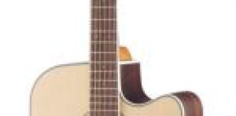 Valor promocional violão Walden