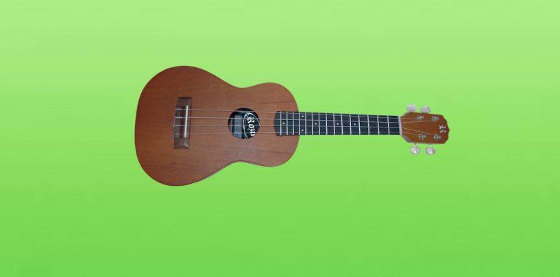 Rozini apresenta seu novo ukulele