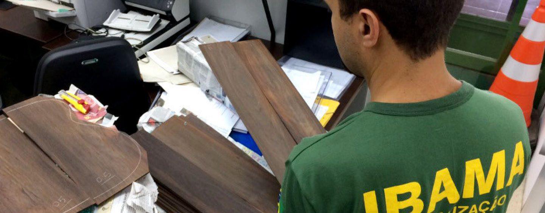 Luteria: Jacarandá Brasileiro para instrumentos musicais somente com licença da CITES