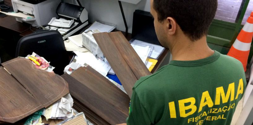 Ibama apreende em SP carga de madeira ameaçada de extinção para fabricação de instrumentos musicais