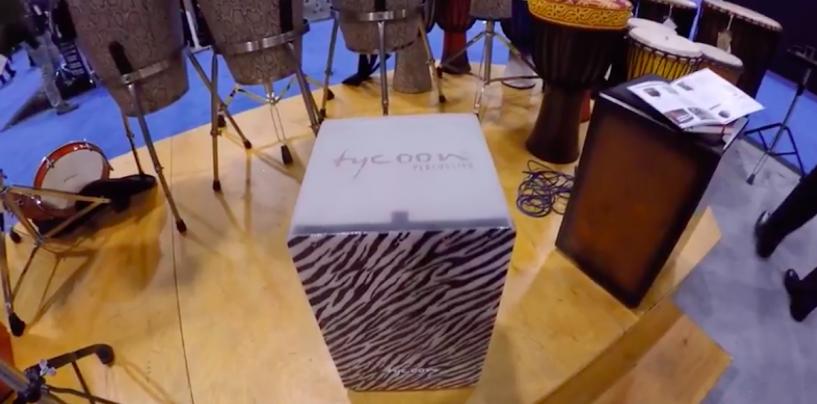 A floresta chega à Tycoon com seu novo cajon Zebra Branco