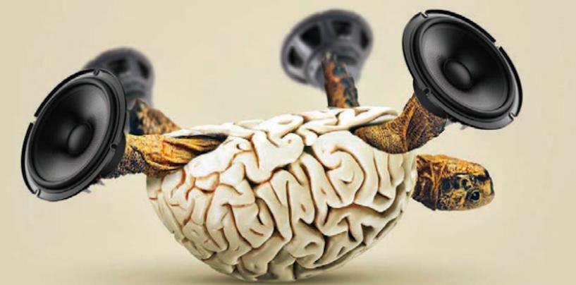 Nosso ramo passa por uma grave crise de criatividade e inovação
