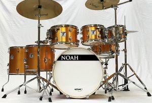 NOAH TC DH copia