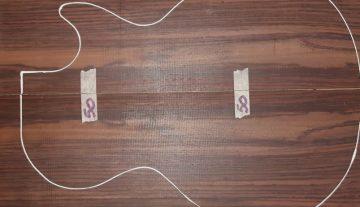Cites isenta restrições do Jacarandá para instrumentos musicais
