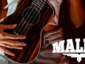 Malibu é a nova marca da AVS Bags