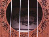 GB Musical traz ukuleles Spring para o Brasil