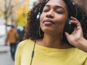 Música para quem vive de música – Volume 13