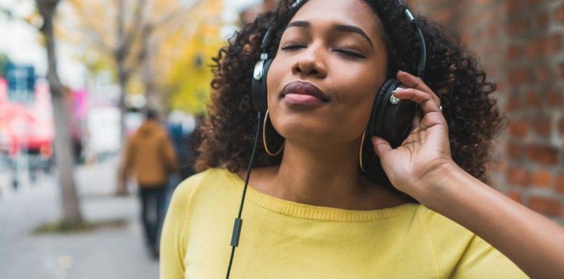 Música para quem vive de música – Volume 14