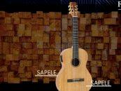 Strinberg apresenta violões Forest Series