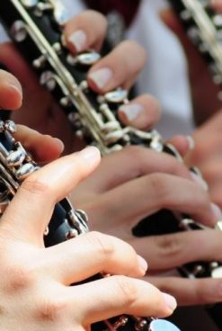 Clarinetes e saxofones: cuidados e manutenção