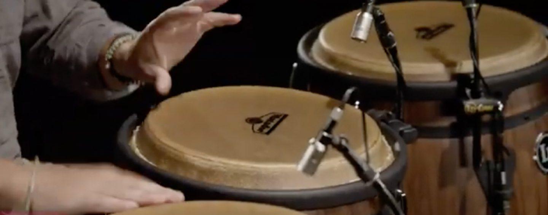 Sonotec traz congas Matador da Latin Percussion